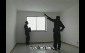 Aranhas (pág.5)